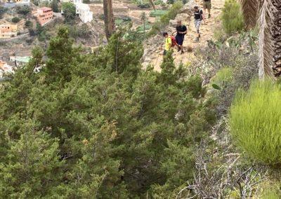Wandergruppe beim Abstieg Vallerhermoso Roque Cano