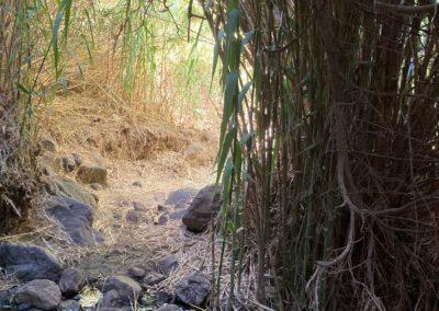 Weg im Flussbett zum Wasserfall Valle Gran Rey